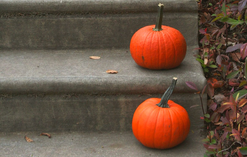 preparing-sidewalk-walkway-halloween